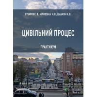 Цивільний процес : практикум